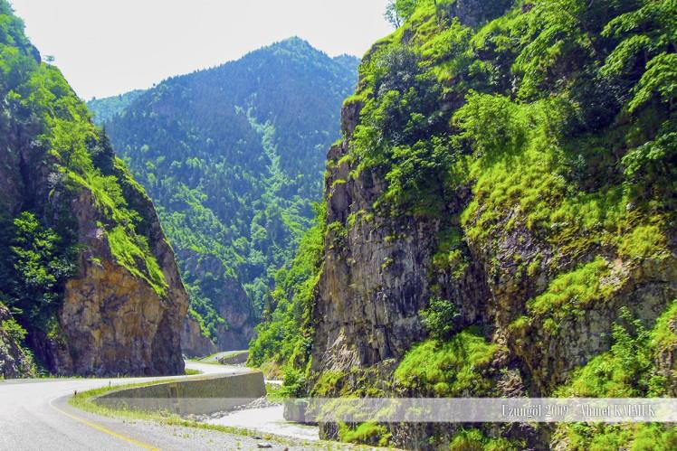 Uzungöl Yol Fotoğrafları
