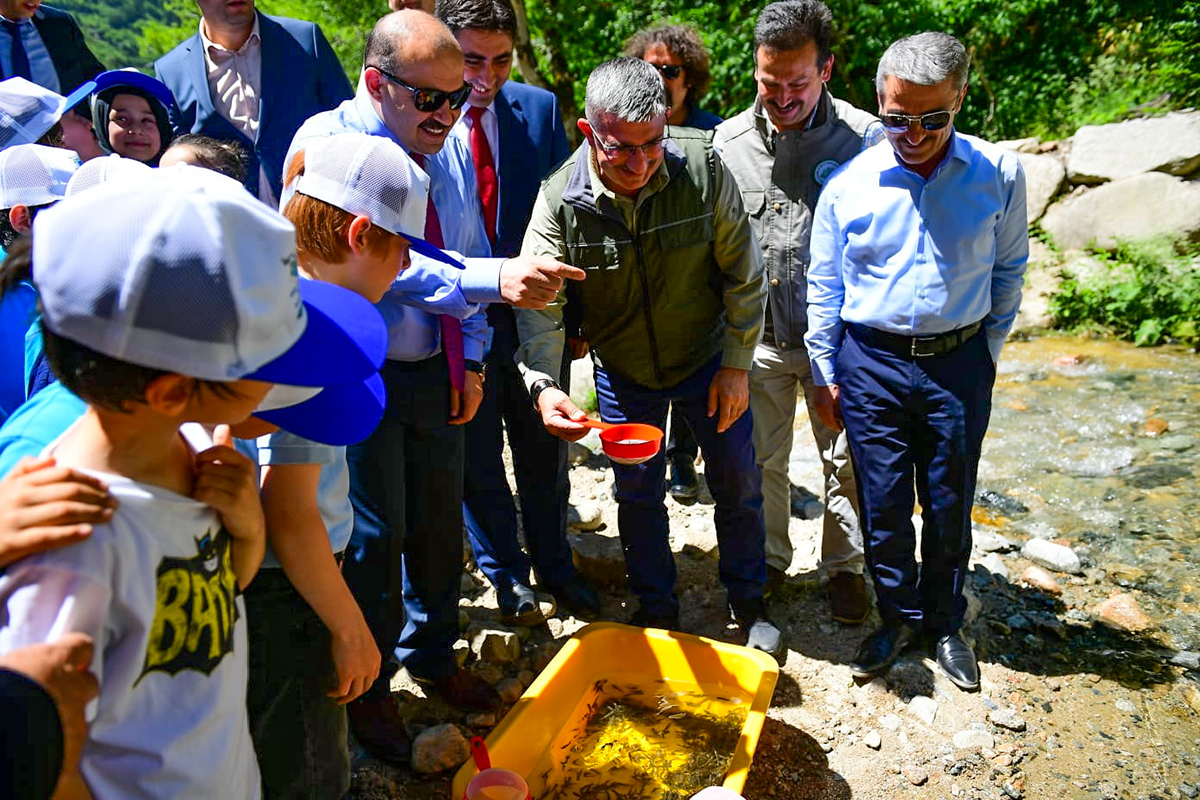 Trabzon Valisi İsmail Ustaoğlu Solaklı Deresine Alabalık Yavrusu Bıraktı